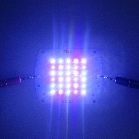 Cree XP-E Epileds UV 430nm Royal Blue 450nm 470nm White 7000K LED Matrix 30 Dots