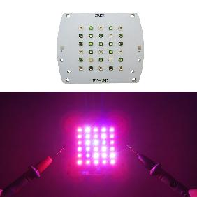 100W UV 395nm 430nm Blue 460nm Green 530nm Red 630nm 660nm White Full Color LED