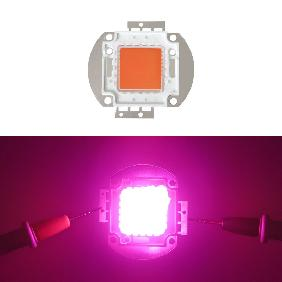 10W 20W 30W 50W 100W LED 380nm-840nm Full Spectrum Grow Light For Growth Bloom