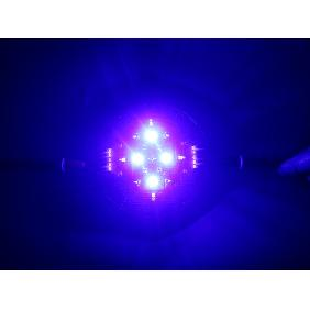 5 Channel Cree Epileds Red Royal Blue White Cyan UV LED Reef...